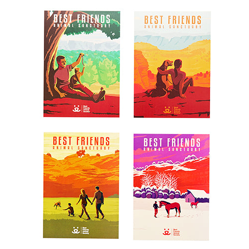 Sanctuary Art Postcards, 4-pack