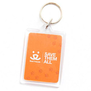 Adopt Your Next Pet Keychain