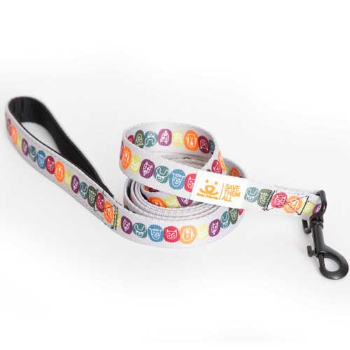 My Best Friend Dog Leash