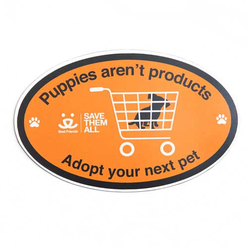 Adopt Your Next Pet Bumper Magnet