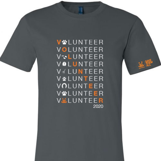 2020 Volunteer T Shirt, Adult