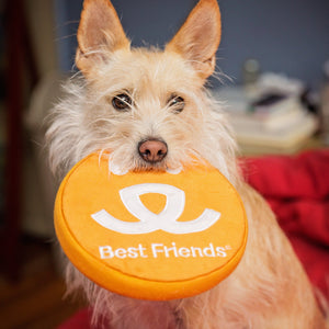 Logo Dog Toy