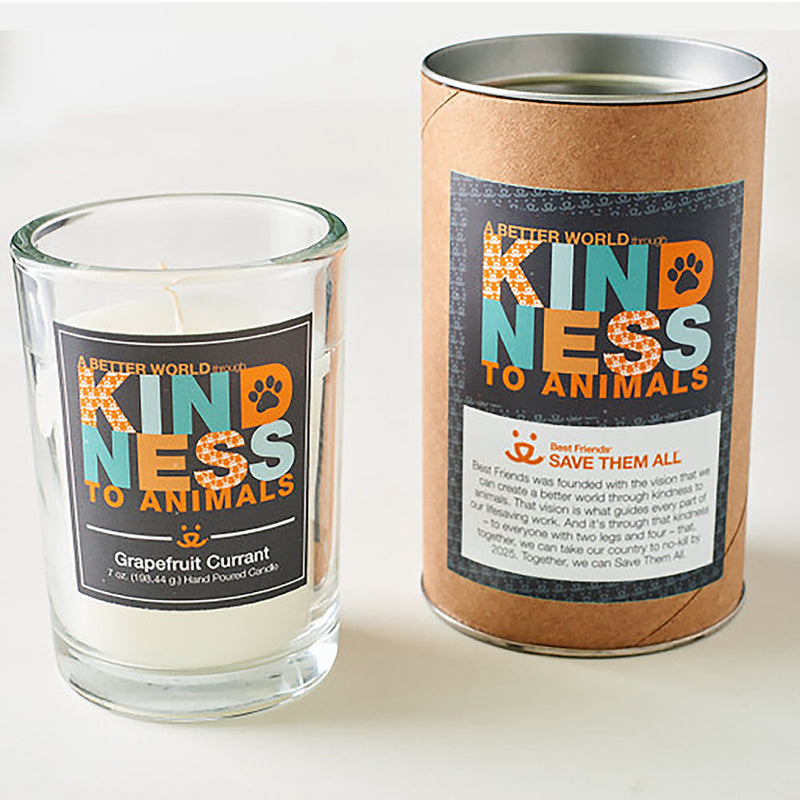 Kindness, Vision Candle