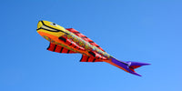 New in store - Kites for Kids