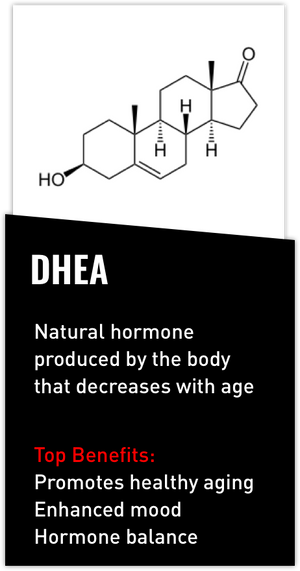 Mdrive ingredient DHEA