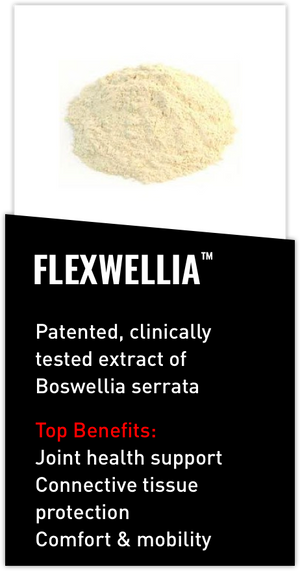 Mdrive ingredient Flexwellia boswellia serrata