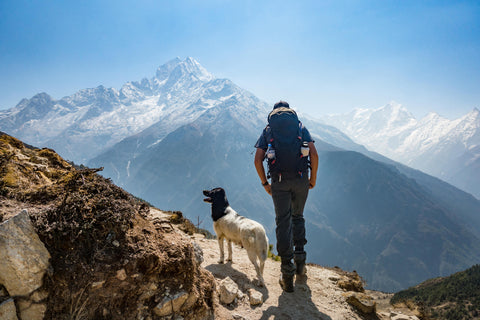 Man hiking with a dog on a mountain