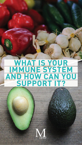 What is your immune system and how can you support it