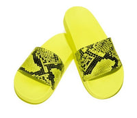 THE CROC WALK SLIDES
