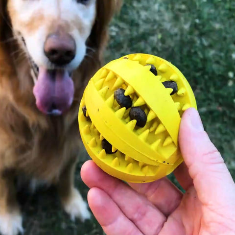 dog chew toys dog toys dog ball chewing ball aggressive dogs dog trainer iq dog