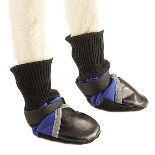 Pet Dog Boots (set of 4) by Pet Edge