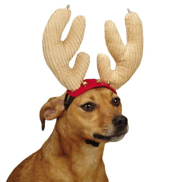 Aria Jolly Jingle Pet Dog Antlers by Pet Edge