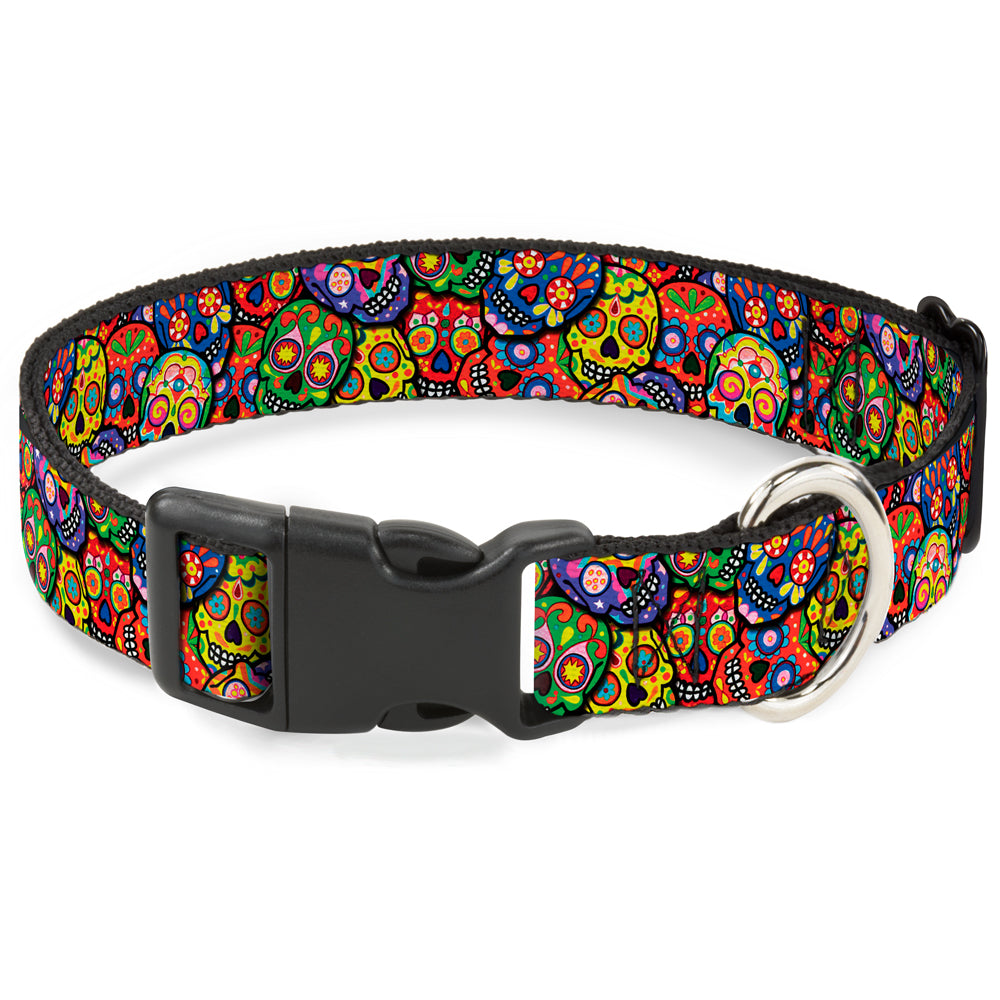 Buckle-Down Thaneeya Colorful Calaveras Pet Dog Collar by Buckle-Down
