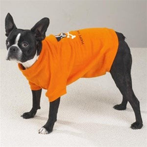 Happy Halloween Glow-in-the-Dark Pet Dog Sweatshirt by Pet Edge
