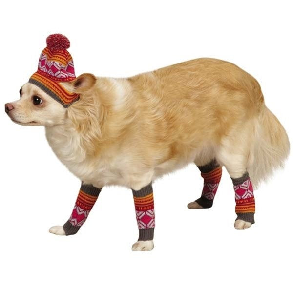 East Side Collection Northern Lights Hat & Leg Warmer Set Pet Dog by Pet Edge
