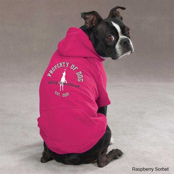 Pet Dog Is Good_ ¢ Solid Pet Dog Hoodie by Pet Edge