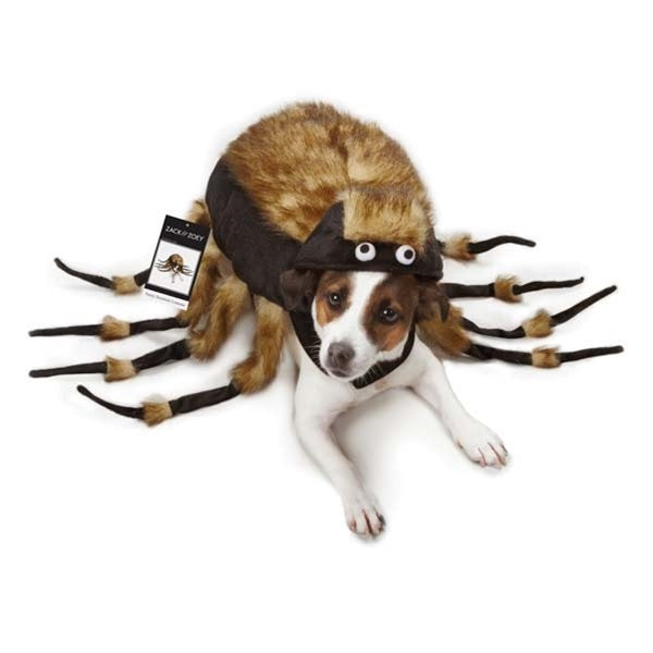 Zack & Zoey Fuzzy Tarantula Pet Dog Costume by Pet Edge