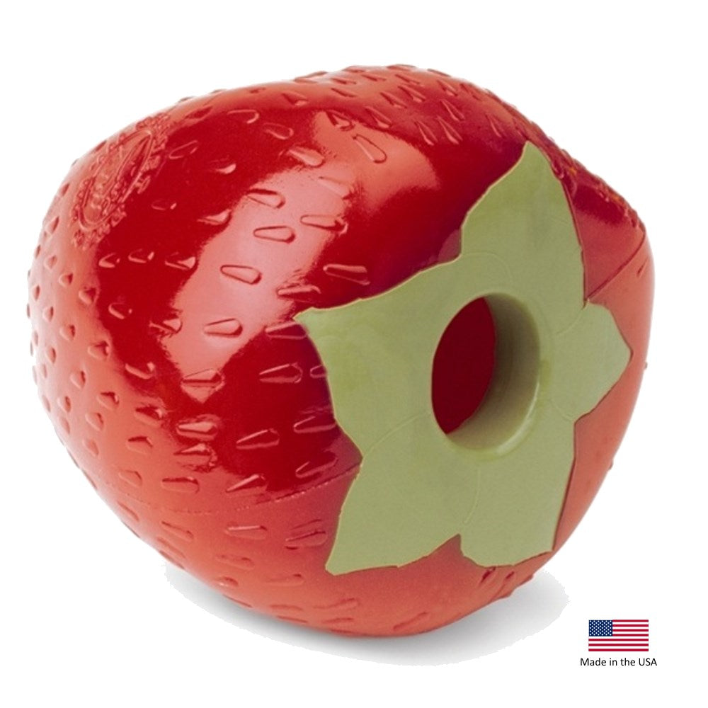 Orbee-Tuff'ΠStrawberry with Treat Spot_ʢ Pet Dog Toy by Planet Dog