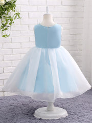 onlybridals Baby Blue Flower Girl Dresses for Weddings Organza Flowers Holy Communion Dresses Prom Dress Birthday Party Dresses