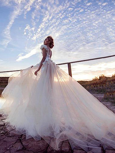 onlybridals Tulle A-line Wedding Dresses Sexy Backless Bridal Dress Beach Wedding Dress - onlybridals
