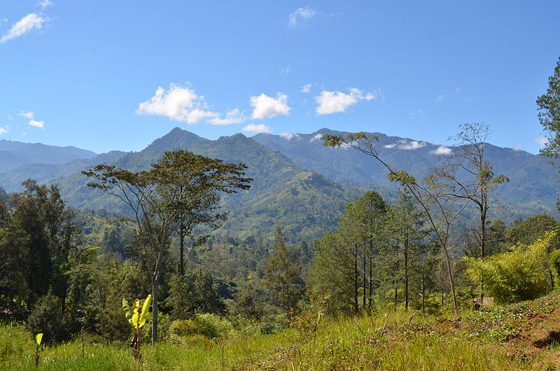The Highlands of Papua New Guinea (photo via Wikimedia Commons)