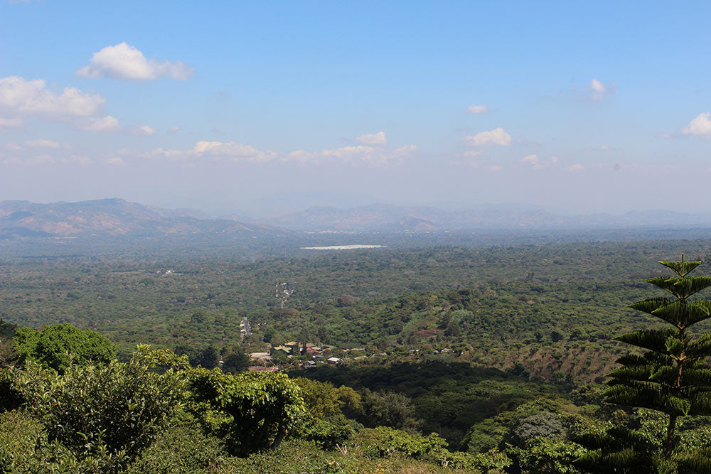 A view to the South from El Manzano. Note the large commercial coffee mill in the foreground.