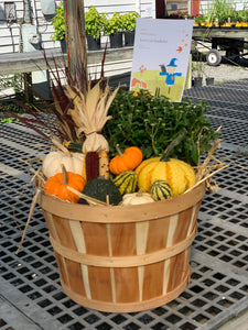 Fall Bushel Basket w/ Mum