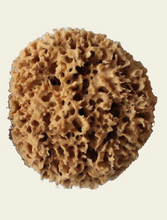Load image into Gallery viewer, Greek Natural Sea Sponges