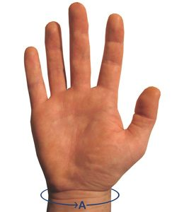 ACTIVE HAND MEASURING GUIDE