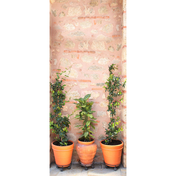 Betterliving Door Mural Pot Plants [Bl0040E]