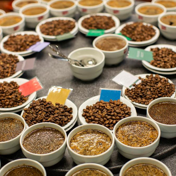 Coffee Quiz: How Well Do You Know Your Brew?