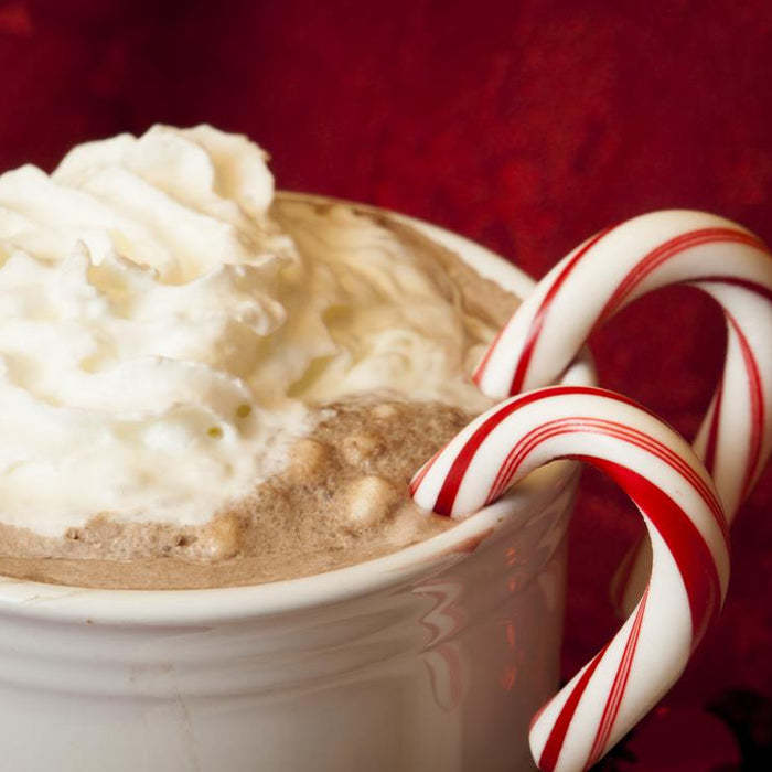 Check Out These Ideas to Warm Up This Winter With Hot Cocoa
