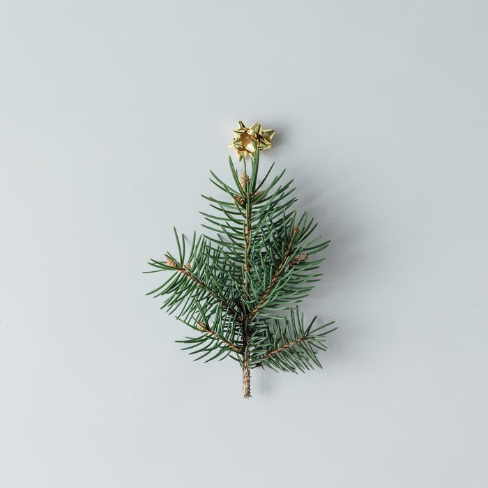 Minimalist Gifting - What To Give?