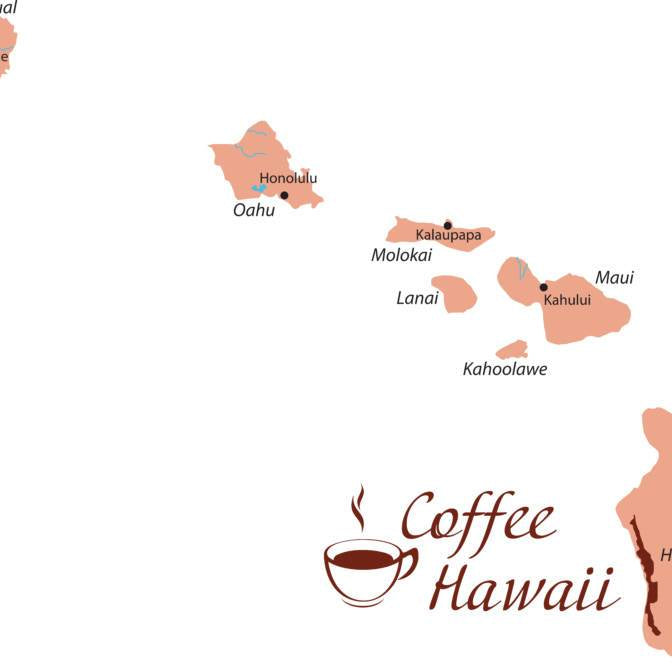 Coffee in Paradise - A Hawaiian Coffee Primer
