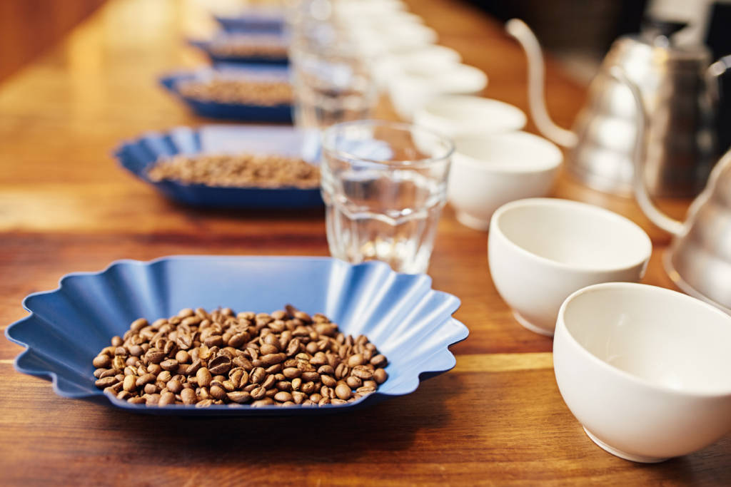 coffee tasting table layout