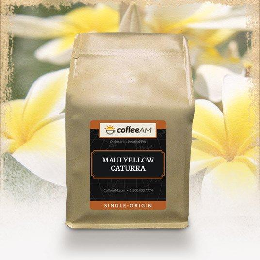 Maui Yellow Caturra Coffee