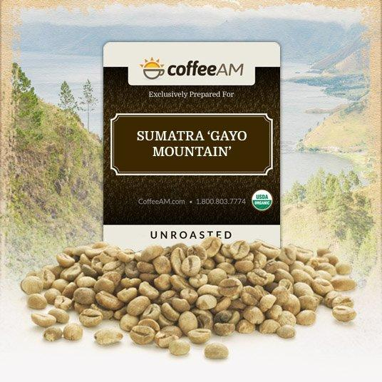 Fair-Trade Organic Sumatra 'Gayo Mountain' Green Coffee