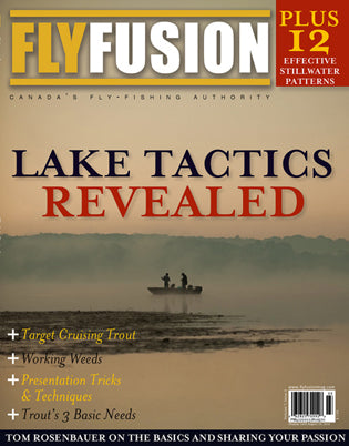 Fly Fusion Volume 7, Issue 3 (Summer 2010)
