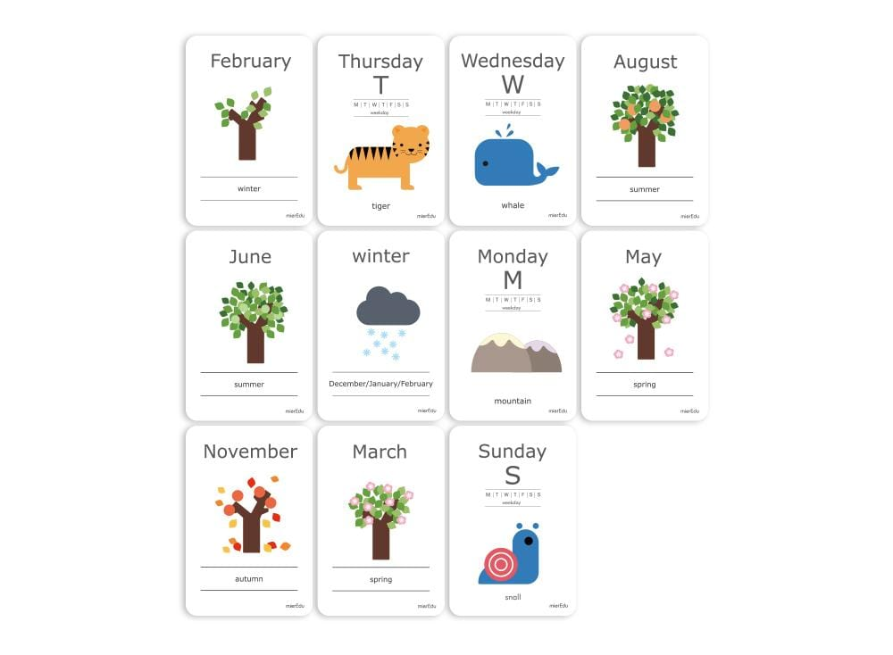 Cognitive Flash Cards - Days & Seasons
