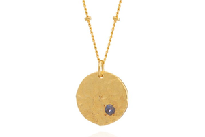 Layla coin Labrodite necklace