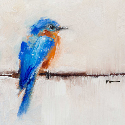 Bluebird on Wire