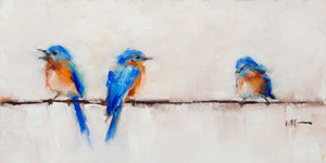 Bluebird Trio: Long Rectangle