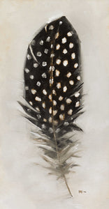 Feather: Black Guinea