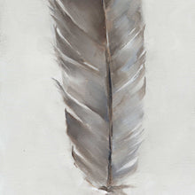 Feather: Dove