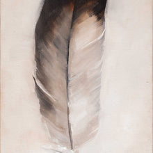 Feather: Gull