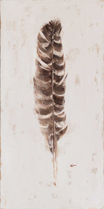 Feather: Striped