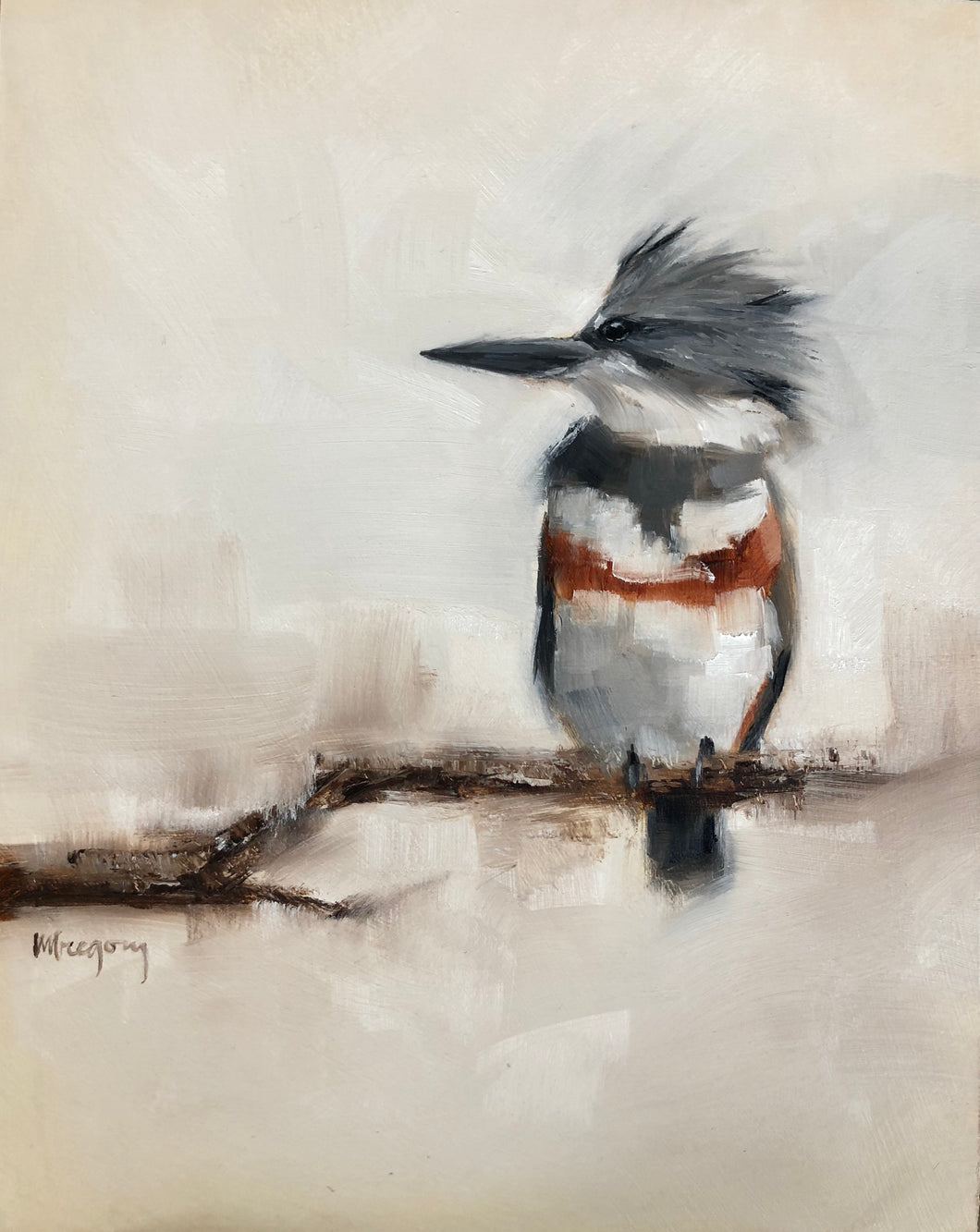 Wings at My Window: Belted Kingfisher