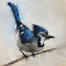 Wings at My Window: Blue Jay