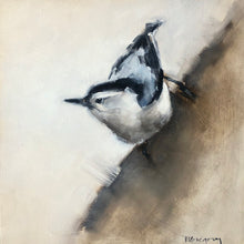 Wings at My Window: Nuthatch