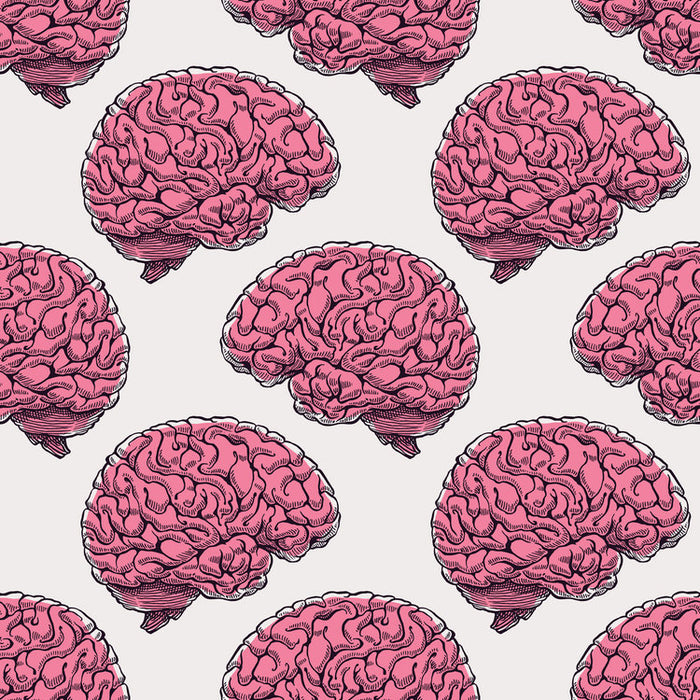 How To Have A Healthy Brain: According To A Harvard Neurology Professor